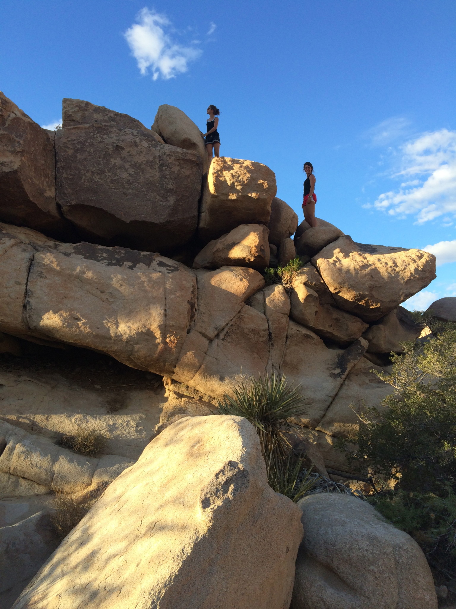 Plan A Road Trip >> Best Day Hikes Joshua Tree National Park - Road Trip the ...