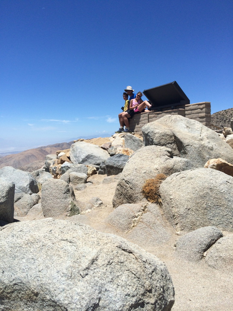 Best Day Hikes Joshua Tree National Park - Road Trip the World